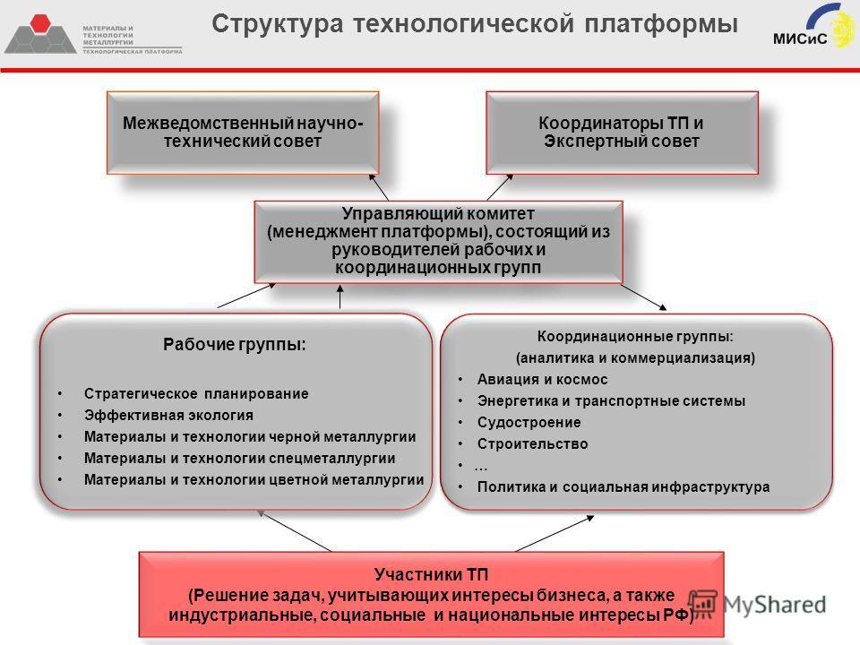 Структура технологической платформы Межведомственный научно- технический совет Координаторы ТП и Экспертный совет Участники ТП (Решение задач, учитывающих интересы бизнеса, а также индустриальные, социальные и национальные интересы РФ) Управляющий ко