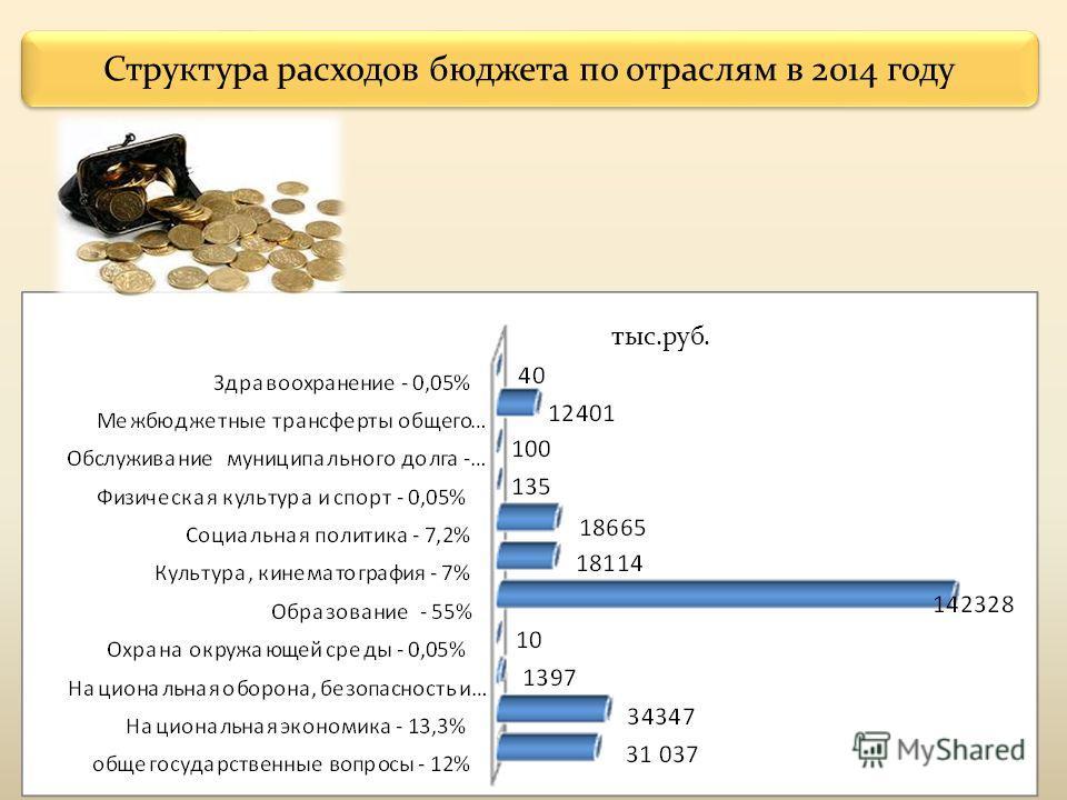 Структура расходов бюджета по отраслям в 2014 году тыс.руб.