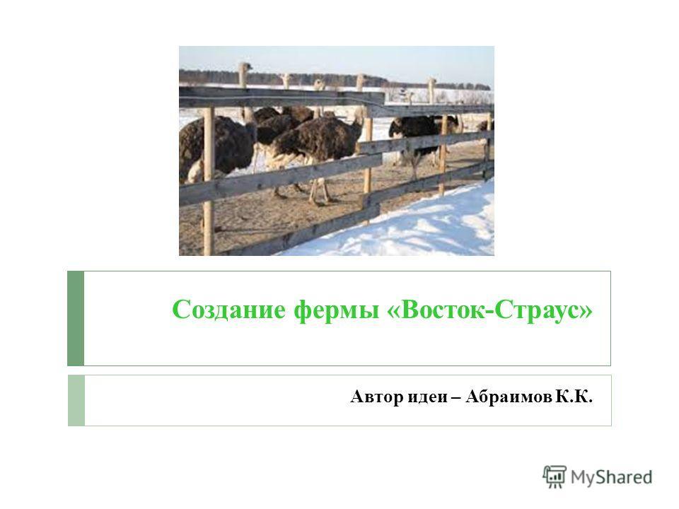 Создание фермы «Восток-Страус» Автор идеи – Абраимов К.К.