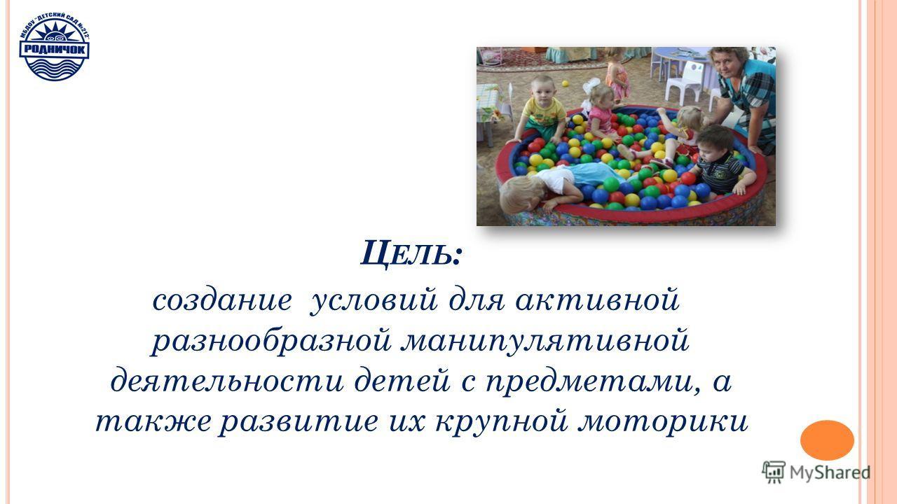 Ц ЕЛЬ : создание условий для активной разнообразной манипулятивной деятельности детей с предметами, а также развитие их крупной моторики