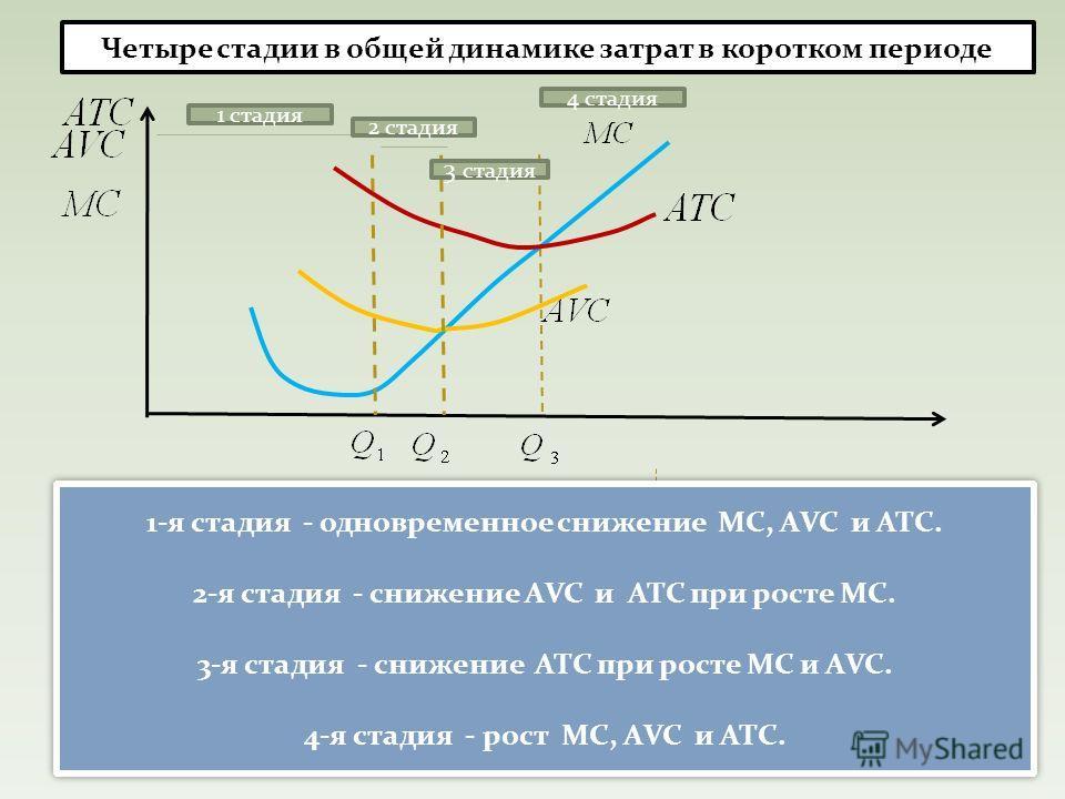 1-я стадия - одновременное снижение МС, АVC и ATC. 2-я стадия - снижение АVC и ATC при росте МС. 3-я стадия - снижение ATC при росте МС и АVC. 4-я стадия - рост МС, АVC и ATC. 1-я стадия - одновременное снижение МС, АVC и ATC. 2-я стадия - снижение А