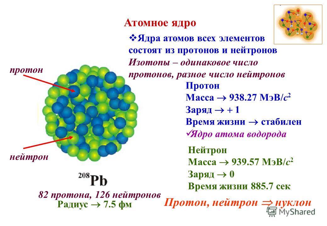 Атомное ядро Ядра атомов всех элементов состоят из протонов и нейтронов Изотопы – одинаковое число протонов, разное число нейтронов протон нейтрон 82 протона, 126 нейтронов Протон Масса 938.27 МэВ/с 2 Заряд 1 Время жизни стабилен Ядро атома водорода