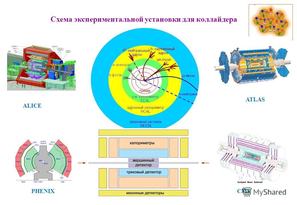 Схема экспериментальной установки для коллайдера ALICE ATLAS CMSPHENIX