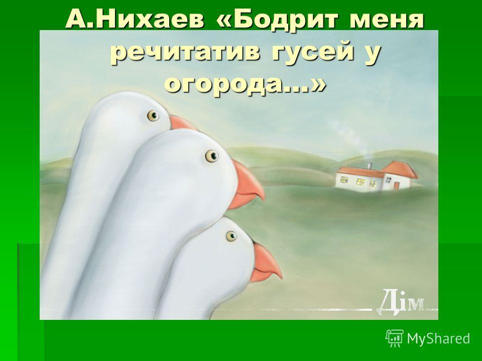А.Нихаев «Бодрит меня речитатив гусей у огорода…»