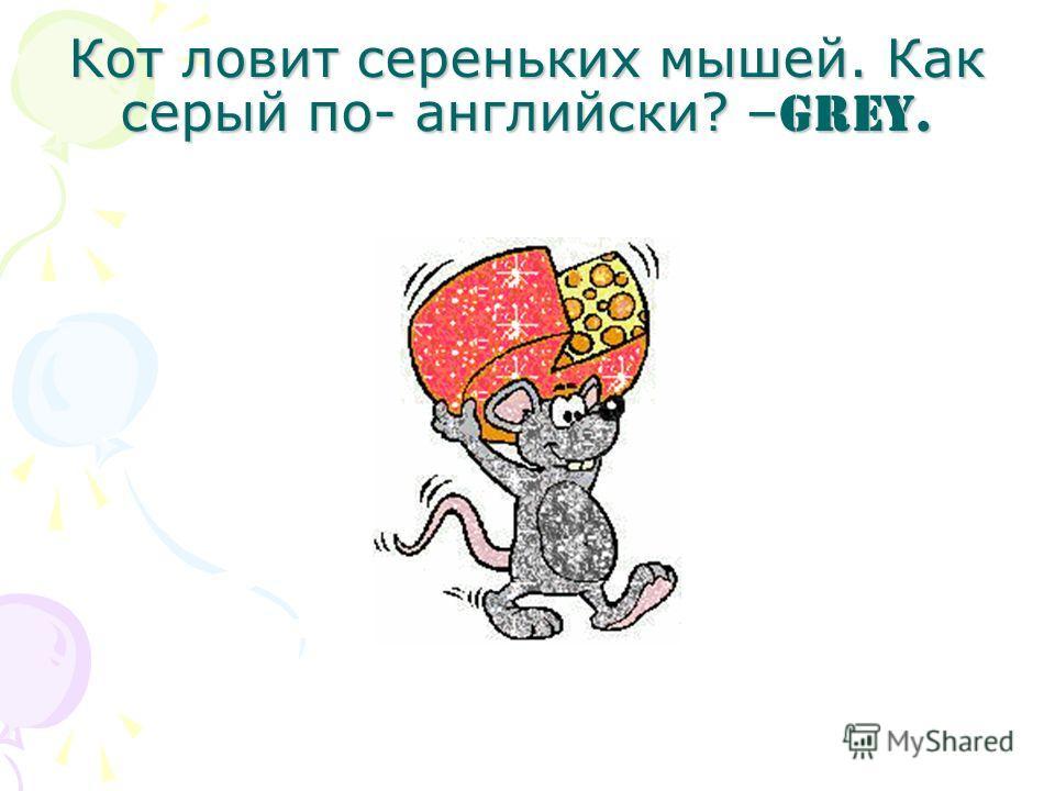 Кот ловит сереньких мышей. Как серый по- английски? – Grey.