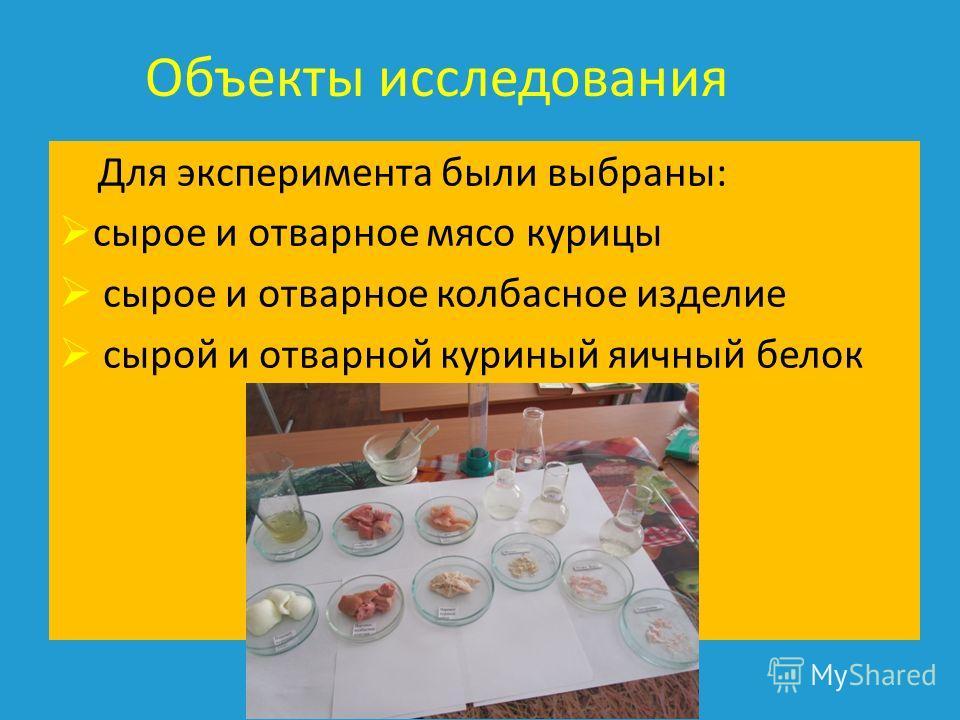Объекты исследования Для эксперимента были выбраны : сырое и отварное мясо курицы сырое и отварное колбасное изделие сырой и отварной куриный яичный белок