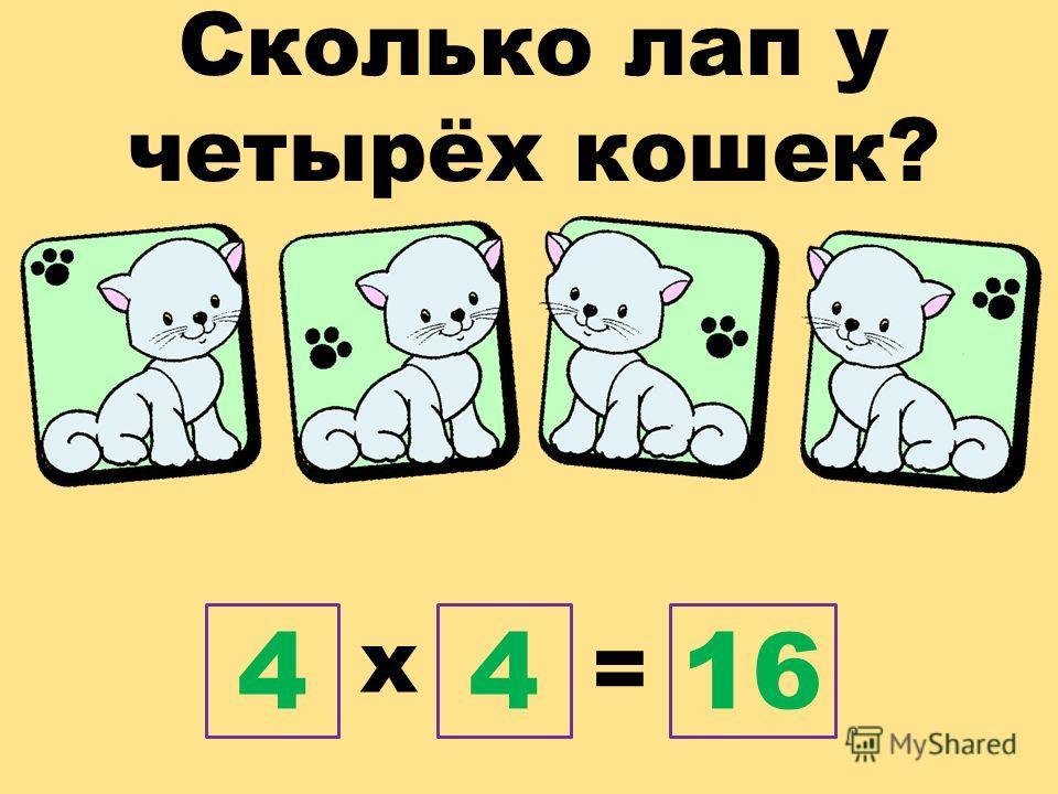 Сколько лап у четырёх кошек? х = 4416