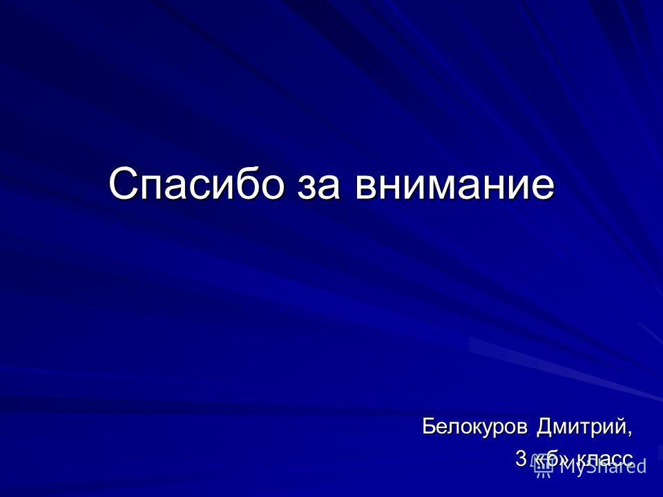 Спасибо за внимание Белокуров Дмитрий, 3 «б» класс