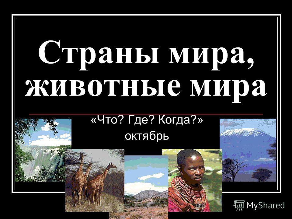 Страны мира, животные мира «Что? Где? Когда?» октябрь