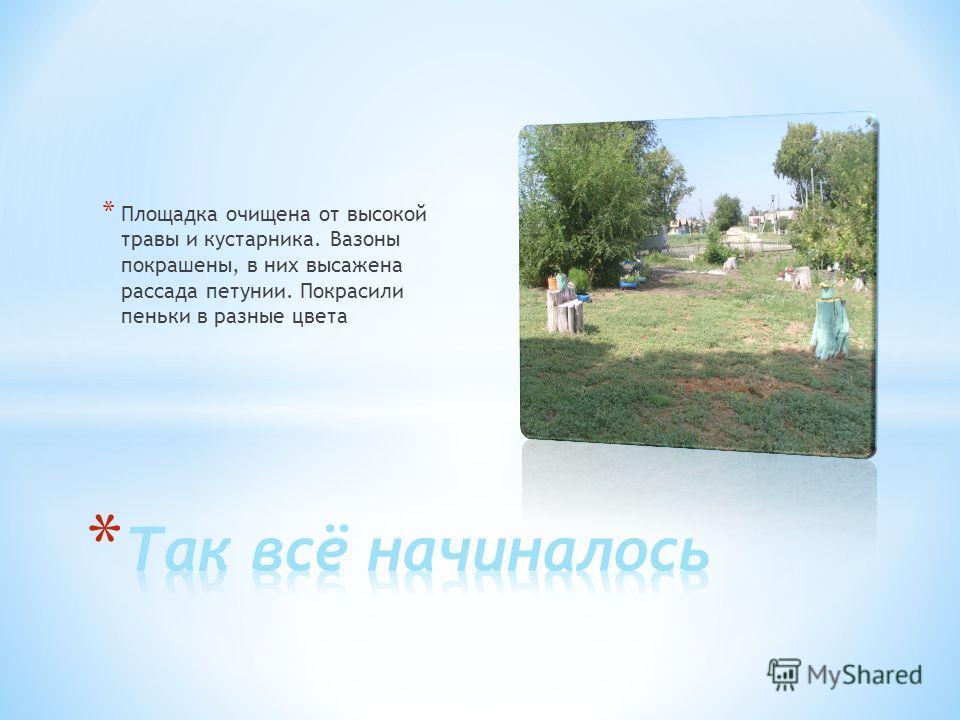 * Площадка очищена от высокой травы и кустарника. Вазоны покрашены, в них высажена рассада петунии. Покрасили пеньки в разные цвета