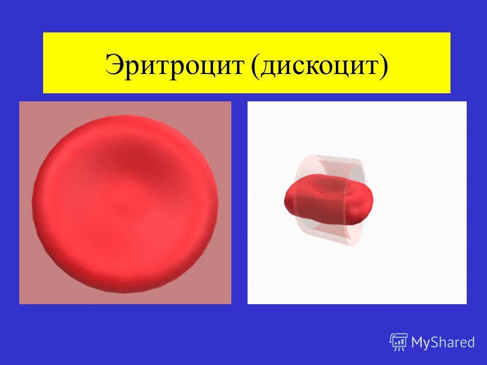 Эритроцит (дискоцит)