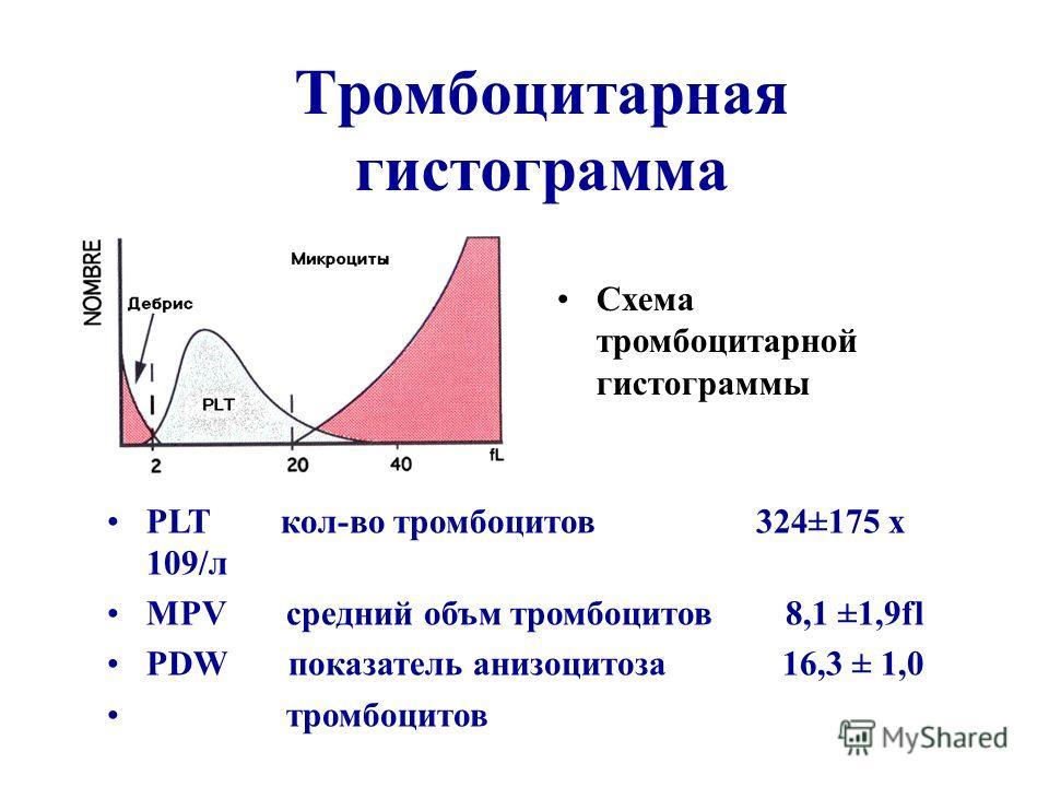 Тромбоцитарная гистограмма Схема тромбоцитарной гистограммы PLT кол-во тромбоцитов 324±175 х 109/л MPV средний объм тромбоцитов 8,1 ±1,9fl PDW показатель анизоцитоза 16,3 ± 1,0 тромбоцитов