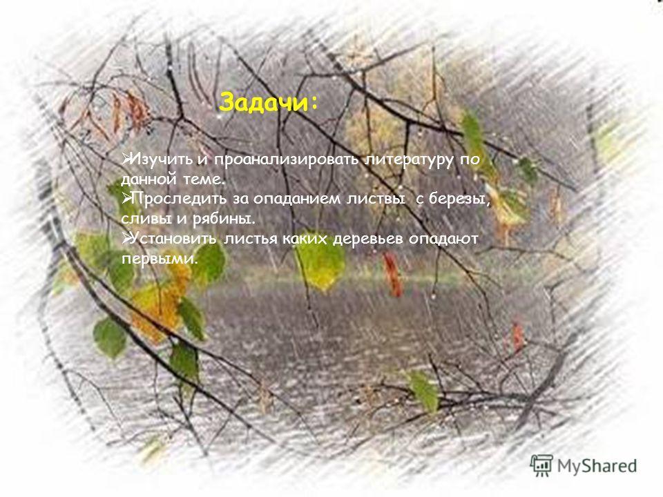 Задачи: Изучить и проанализировать литературу по данной теме. Проследить за опаданием листвы с березы, сливы и рябины. Установить листья каких деревьев опадают первыми.