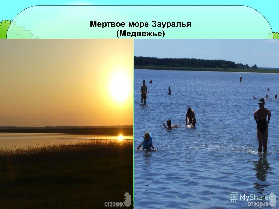 Мертвое море Зауралья (Медвежье)