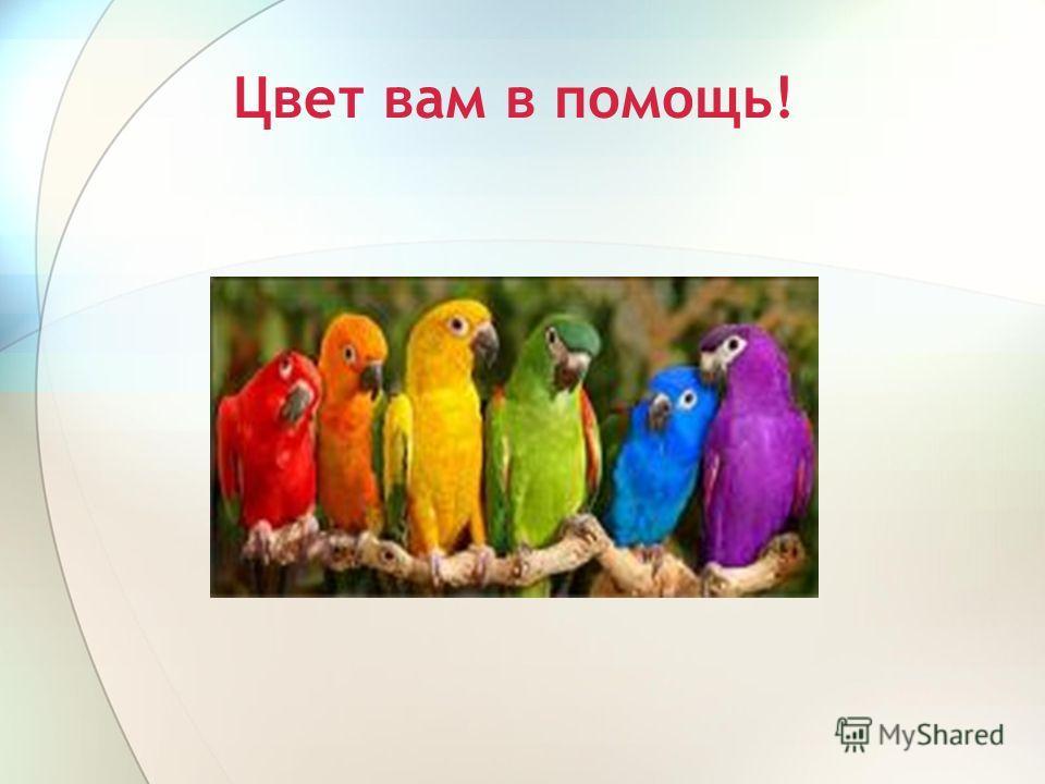 Цвет вам в помощь!