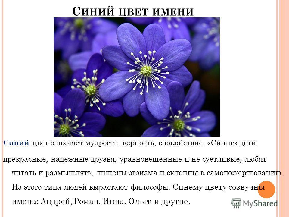 С ИНИЙ ЦВЕТ ИМЕНИ Синий цвет означает мудрость, верность, спокойствие. «Синие» дети прекрасные, надёжные друзья, уравновешенные и не суетливые, любят читать и размышлять, лишены эгоизма и склонны к самопожертвованию. Из этого типа людей вырастают фил