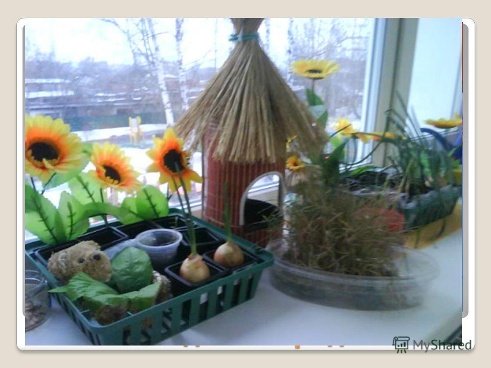 Садим огород