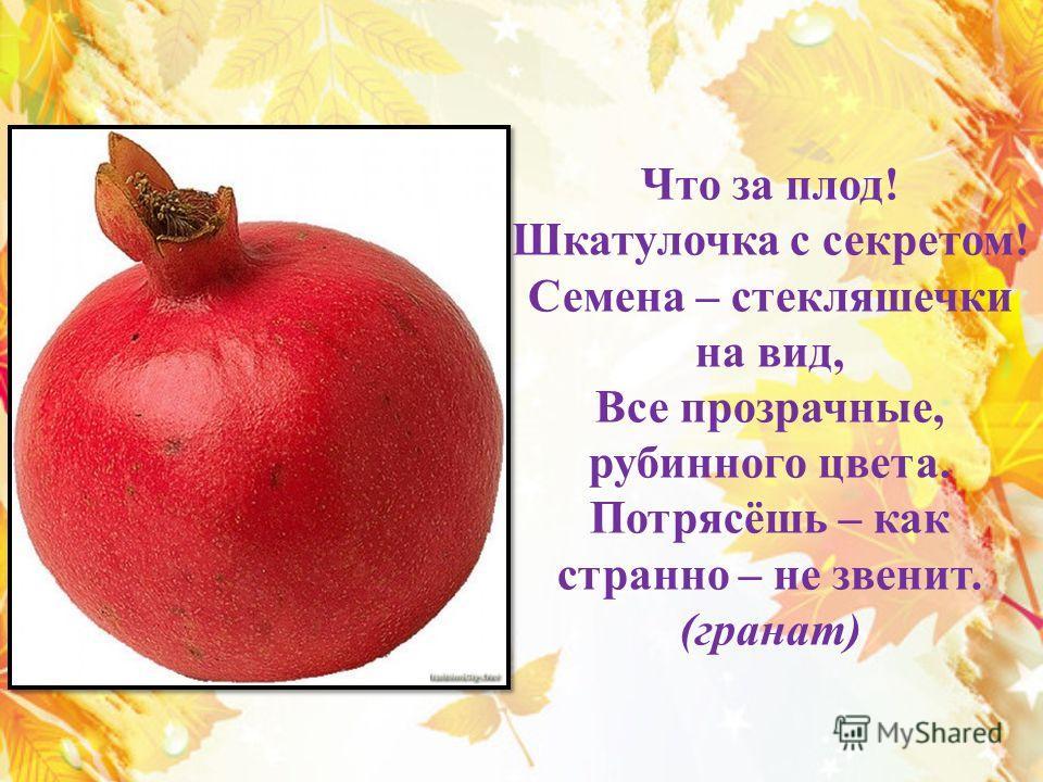 Что за плод! Шкатулочка с секретом! Семена – стекляшечки на вид, Все прозрачные, рубинного цвета. Потрясёшь – как странно – не звенит. (гранат)