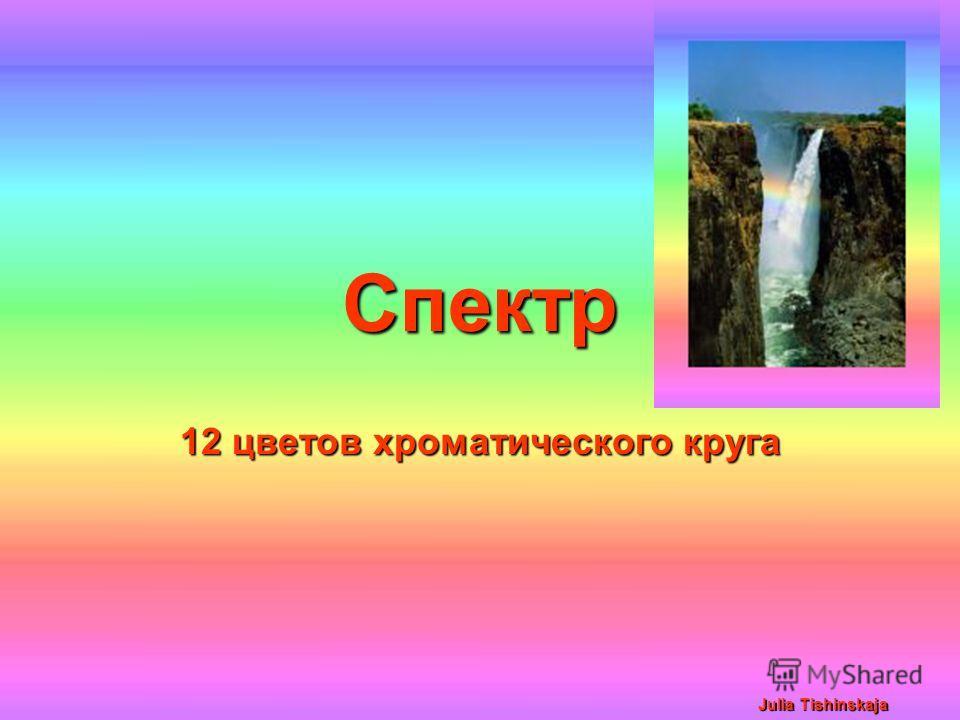 Julia Tishinskaja Спектр 12 цветов хроматического круга Julia Tishinskaja