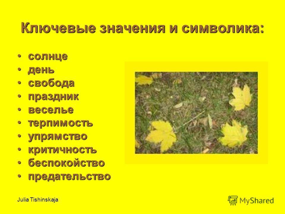 Julia Tishinskaja Ключевые значения и символика: солнцесолнце деньдень свободасвобода праздникпраздник весельевеселье терпимостьтерпимость упрямствоупрямство критичностькритичность беспокойствобеспокойство предательствопредательство