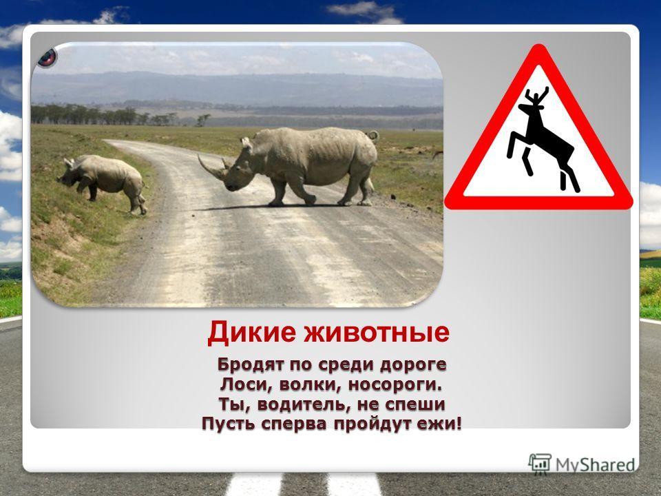 Бродят по среди дороге Лоси, волки, носороги. Ты, водитель, не спеши Пусть сперва пройдут ежи! Дикие животные