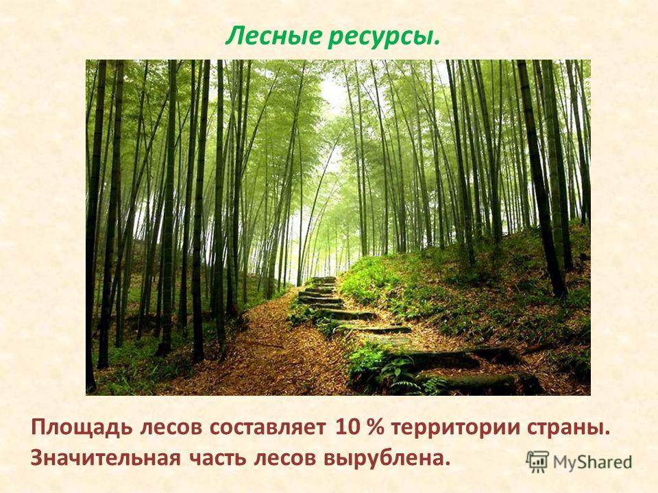 Лесные ресурсы. Площадь лесов составляет 10 % территории страны. Значительная часть лесов вырублена.