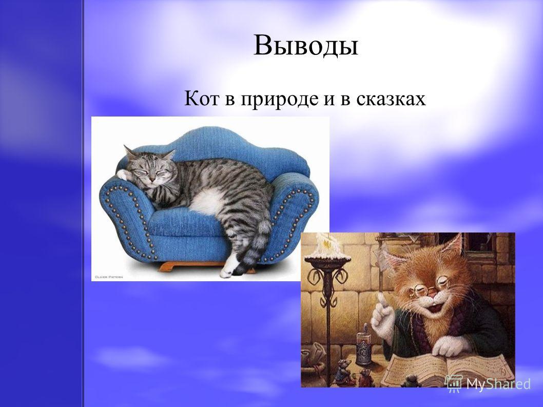 Выводы Кот в природе и в сказках
