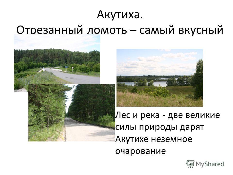 Акутиха. Отрезанный ломоть – самый вкусный Лес и река - две великие силы природы дарят Акутихе неземное очарование