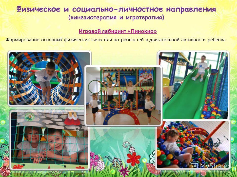 Физическое и социально-личностное направления (кинезиотерапия и игротерапия) Игровой лабиринт «Пинокио» Формирование основных физических качеств и потребностей в двигательной активности ребёнка.