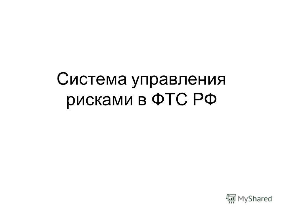 Система управления рисками в ФТС РФ