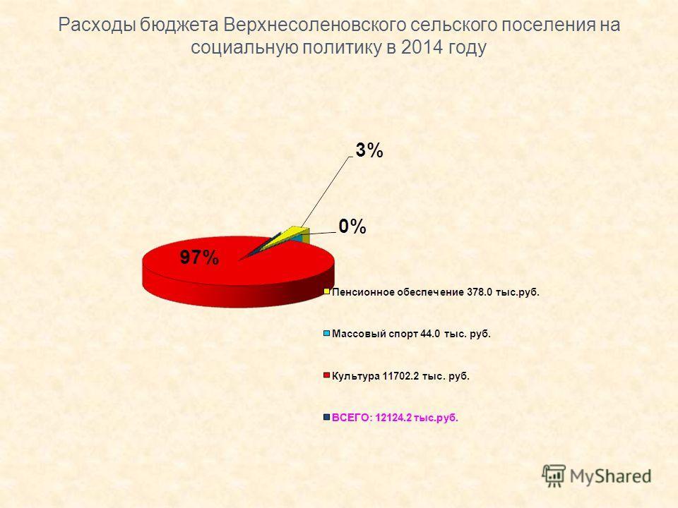 Расходы бюджета Верхнесоленовского сельского поселения на социальную политику в 2014 году