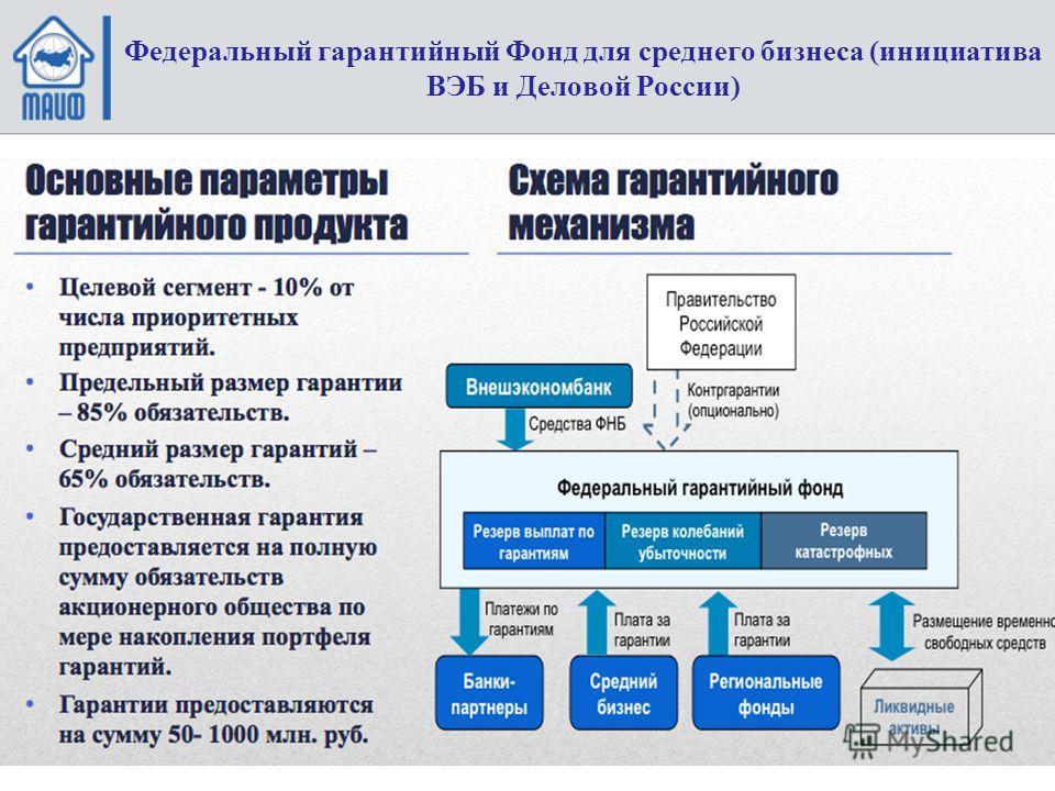 Федеральный гарантийный Фонд для среднего бизнеса (инициатива ВЭБ и Деловой России)