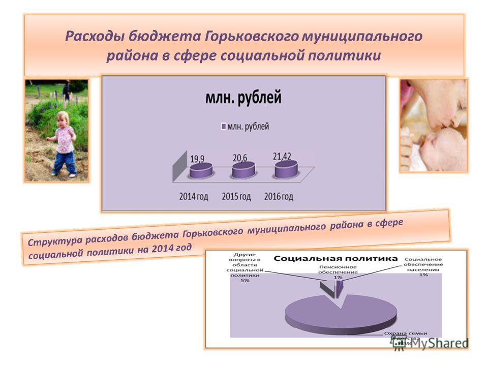 Расходы бюджета Горьковского муниципального района в сфере социальной политики Структура расходов бюджета Горьковского муниципального района в сфере социальной политики на 2014 год