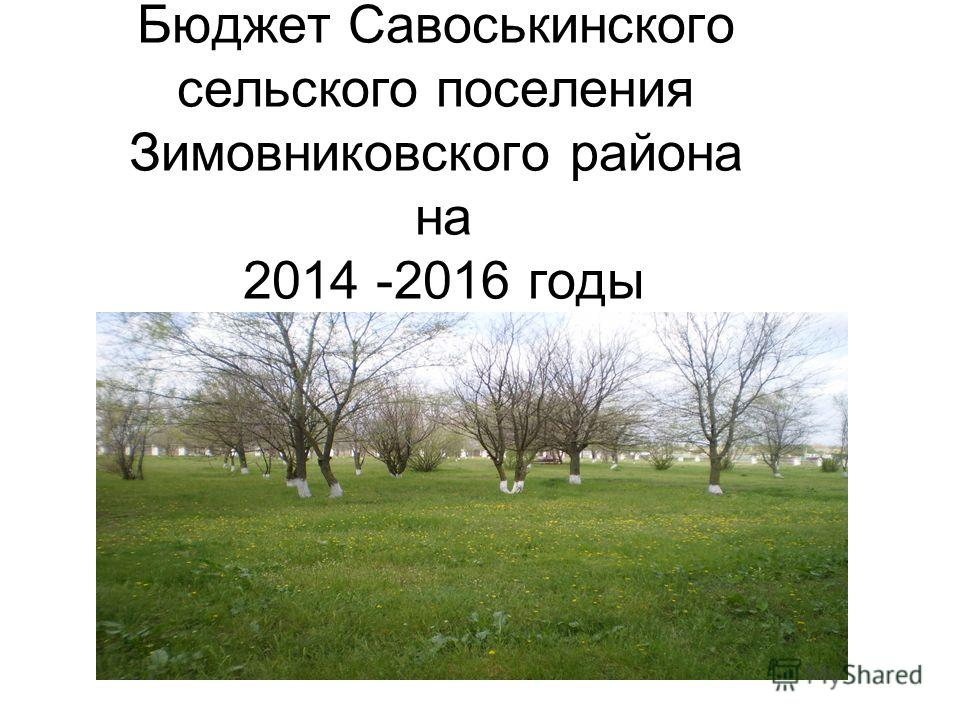 Бюджет Савоськинского сельского поселения Зимовниковского района на 2014 -2016 годы