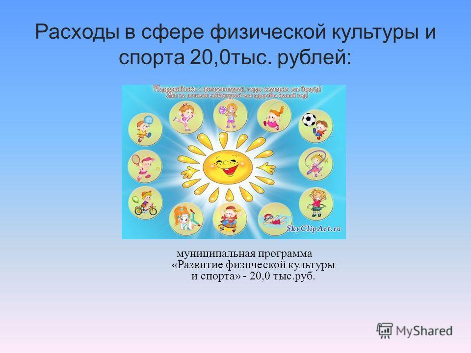 Расходы в сфере физической культуры и спорта 20,0тыс. рублей: муниципальная программа «Развитие физической культуры и спорта» - 20,0 тыс.руб.