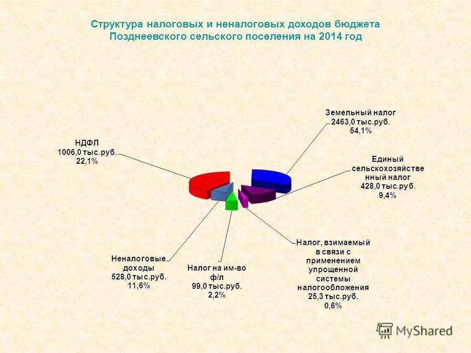 Структура налоговых и неналоговых доходов бюджета Позднеевского сельского поселения на 2014 год