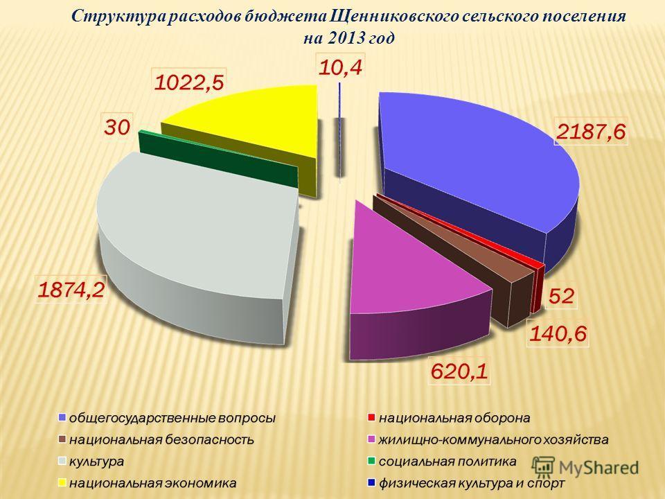 Структура расходов бюджета Щенниковского сельского поселения на 2013 год