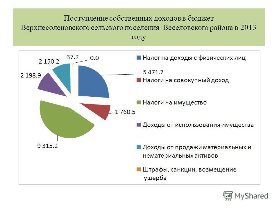 Поступление собственных доходов в бюджет Верхнесоленовского сельского поселения Веселовского района в 2013 году