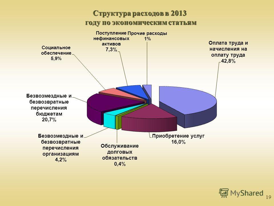 19 Структура расходов в 2013 году по экономическим статьям