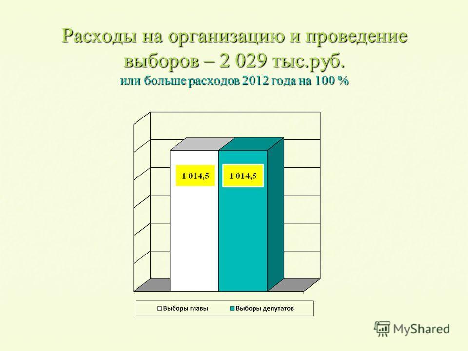Расходы на организацию и проведение выборов – 2 029 тыс.руб. или больше расходов 2012 года на 100 %