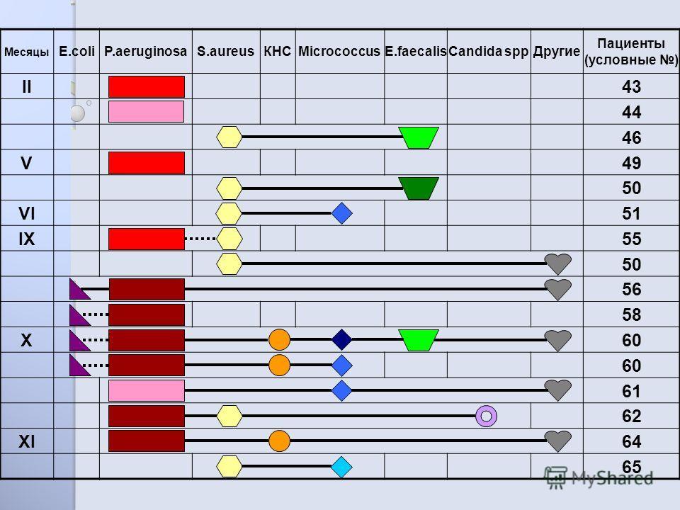 Месяцы E.coliP.aeruginosaS.aureusКНСMicrococcusE.faecalisCandida sppДругие Пациенты (условные ) II43 44 46 V49 50 VI51 IX55 50 56 58 X60 61 62 XI64 65