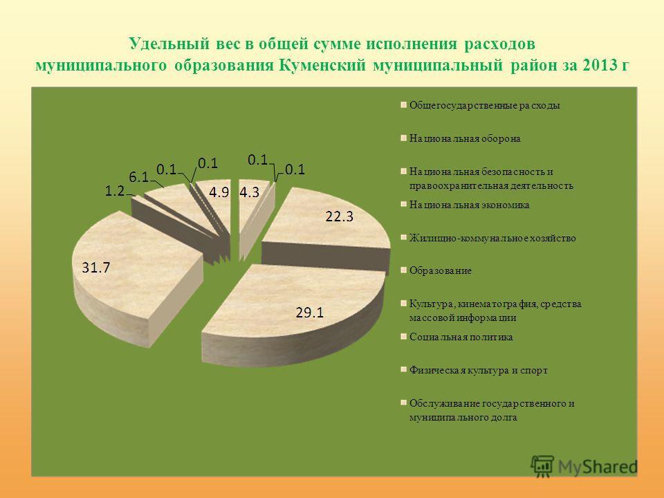 Удельный вес в общей сумме исполнения расходов муниципального образования Куменский муниципальный район за 2013 г