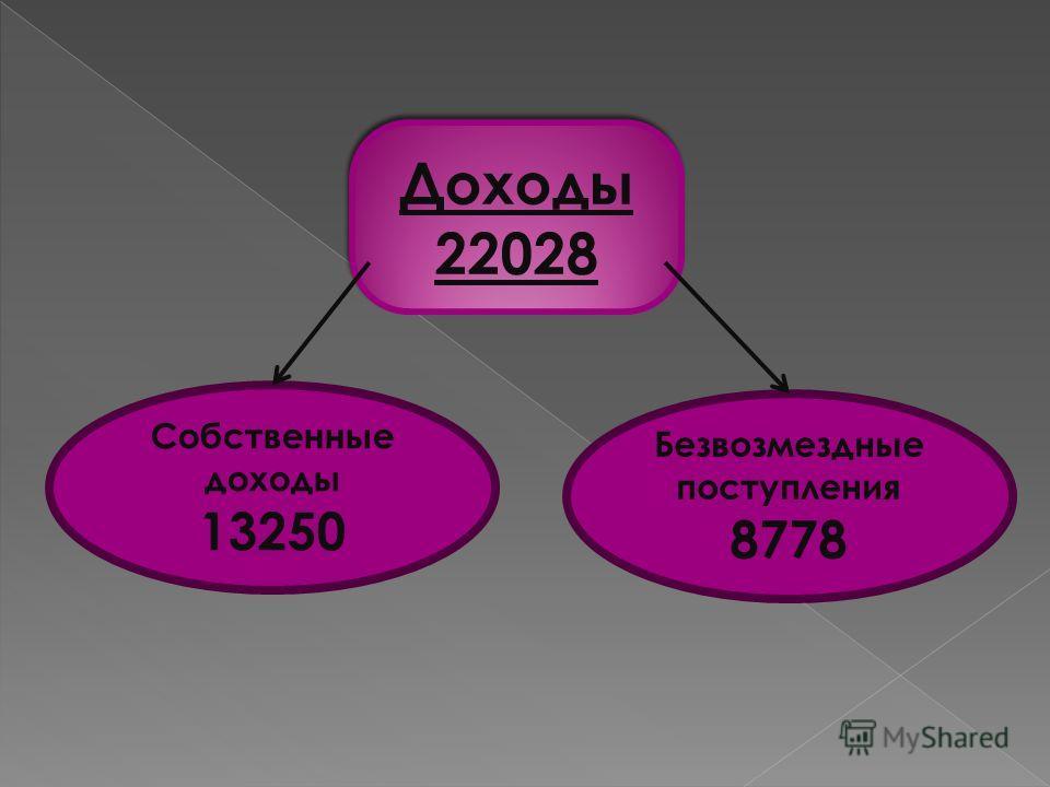 Доходы 22028 Доходы 22028 Собственные доходы 13250 Безвозмездные поступления 8778