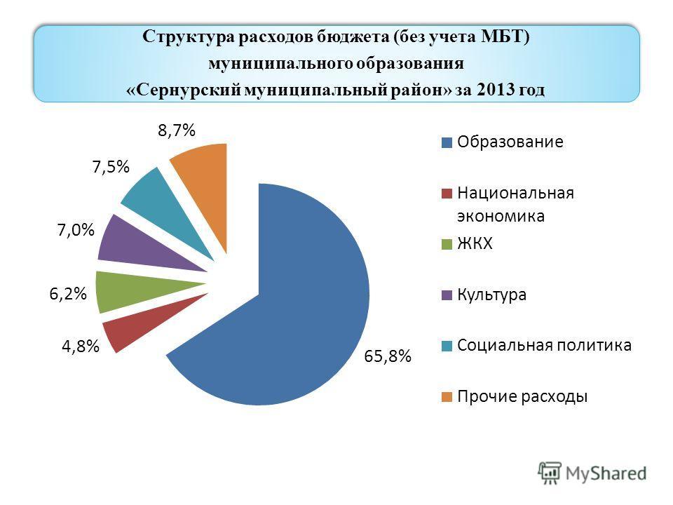 Структура расходов бюджета (без учета МБТ) муниципального образования «Сернурский муниципальный район» за 2013 год