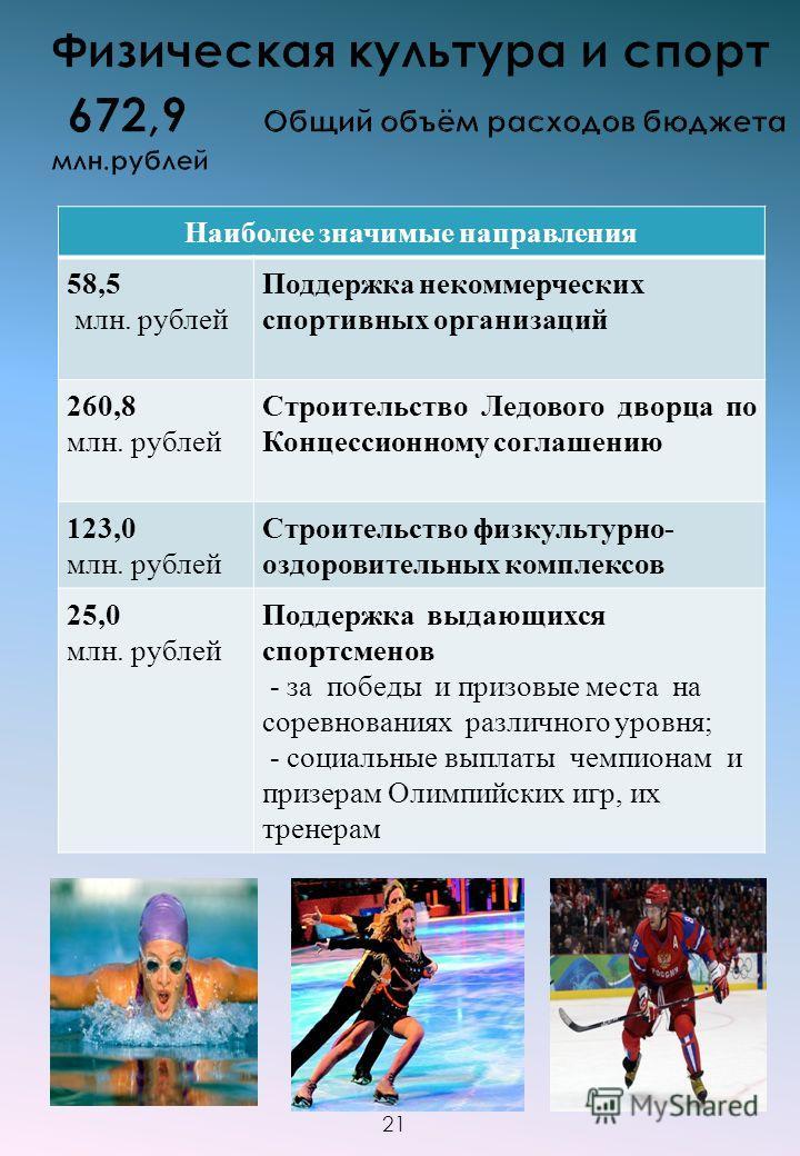 Наиболее значимые направления 58,5 млн. рублей Поддержка некоммерческих спортивных организаций 260,8 млн. рублей Строительство Ледового дворца по Концессионному соглашению 123,0 млн. рублей Строительство физкультурно- оздоровительных комплексов 25,0