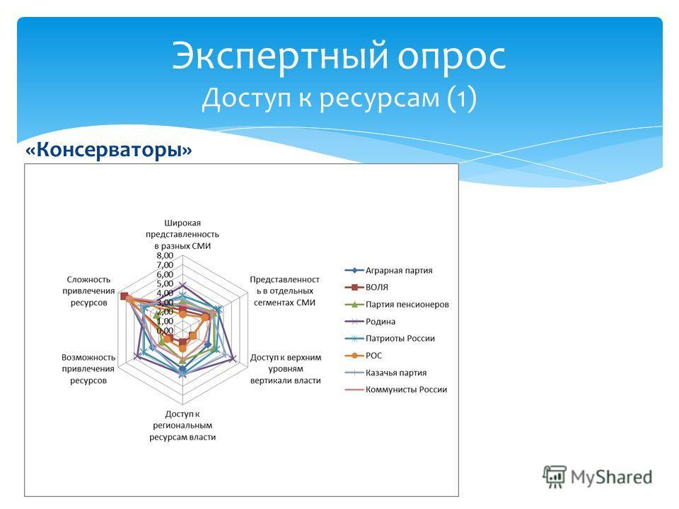 «Консерваторы» Экспертный опрос Доступ к ресурсам (1)