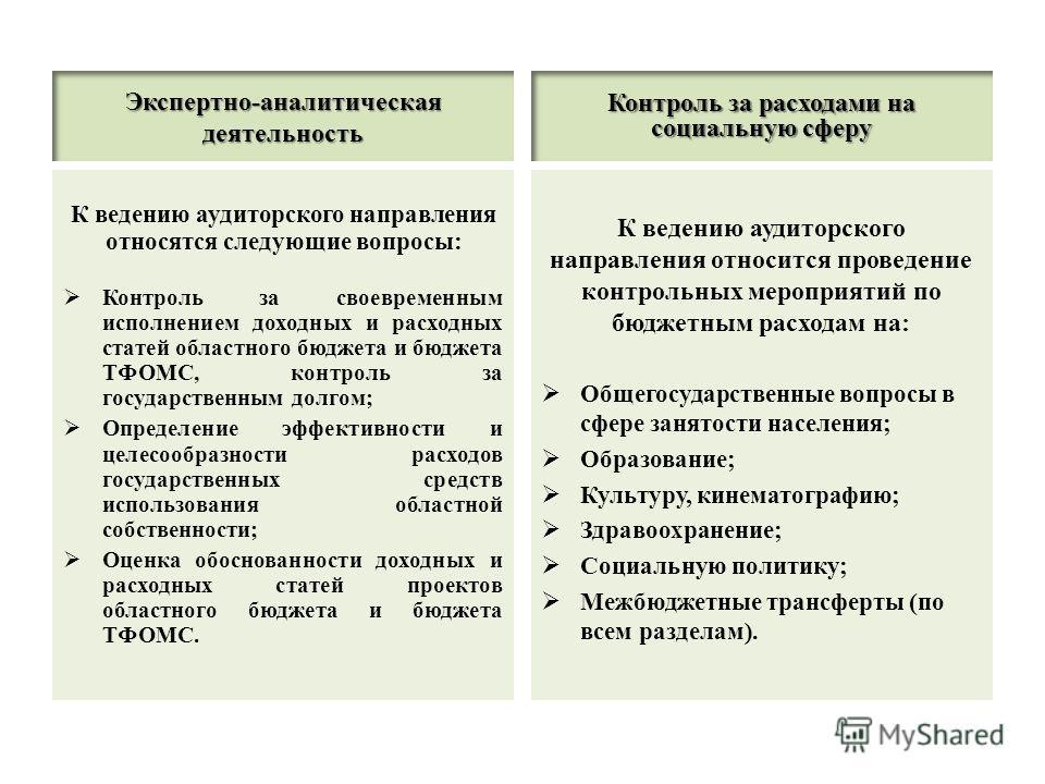 Экспертно-аналитическая деятельность К ведению аудиторского направления относятся следующие вопросы: Контроль за своевременным исполнением доходных и расходных статей областного бюджета и бюджета ТФОМС, контроль за государственным долгом; Определение