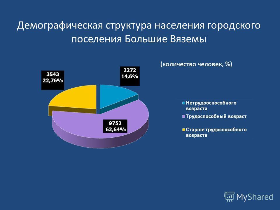 Демографическая структура населения городского поселения Большие Вяземы (количество человек, %)