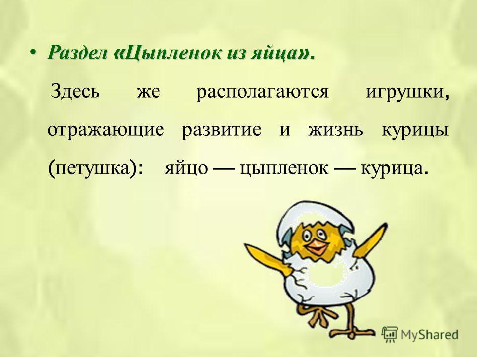 Раздел « Цыпленок из яйца ».Раздел « Цыпленок из яйца ». Здесь же располагаются игрушки, отражающие развитие и жизнь курицы ( петушка ): яйцо цыпленок курица.