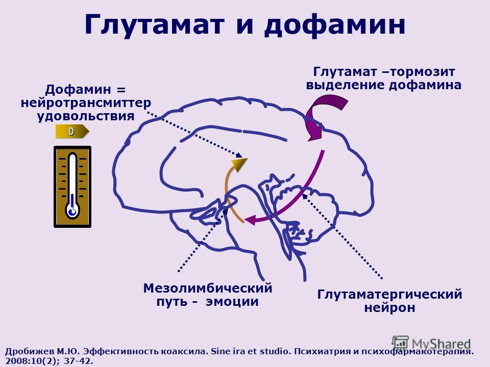 Дробижев М.Ю. Эффективность коаксила. Sine ira et studio. Психиатрия и психофармакотерапия. 2008:10(2); 37-42. Глутамат и дофамин Мезолимбический путь - эмоции Глутаматергический нейрон Дофамин = нейротрансмиттер удовольствия Глутамат –тормозит выдел